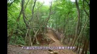 秩父(伊豆ヶ岳、武川岳)プチ登山!