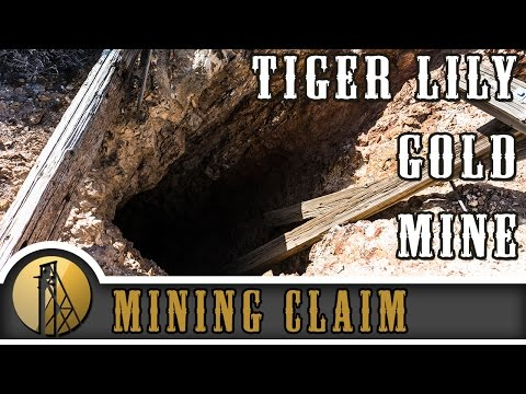Tiger Lily Gold Mine - Nevada - Gold Rush Expeditions - 2015