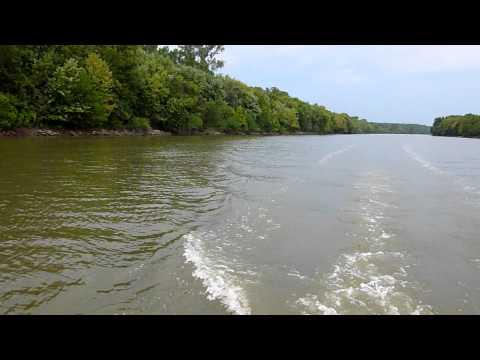 Flying Asian Carp on the Kaskaskia River