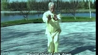 yin style baguazhang combat manual