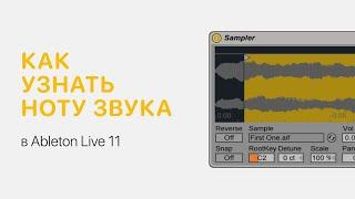 как узнать ноту звука в Ableton Live 10 Ableton Pro Help