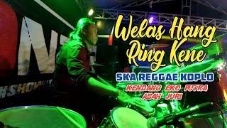 Download Welas Hang Ring Kene - SKA Reggae Koplo Eko Putra New Monata