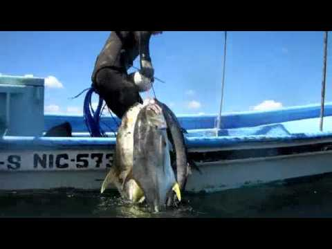 Nicaragua Spearfishing, with El Rayo Charters