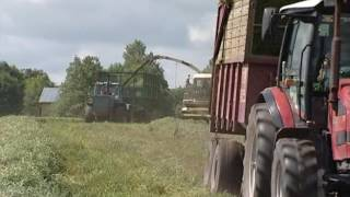Заготовка кормов для молочного животноводства