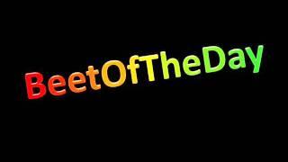 BeetOfTheDay #33: Marco Zardi ft. Nikasoul - Forever (Andry J Remix)