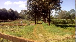 Tigoni Real Estate property for sale in Limuru Kenya