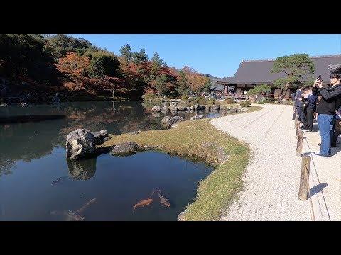 Tenryuji Temple Kyoto Japan