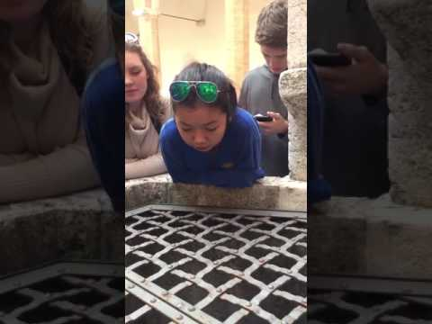 Hallelujah Cover -  Inspiring & Emotional Voice | Girl Amazingly Sings Into A Well In Italy |