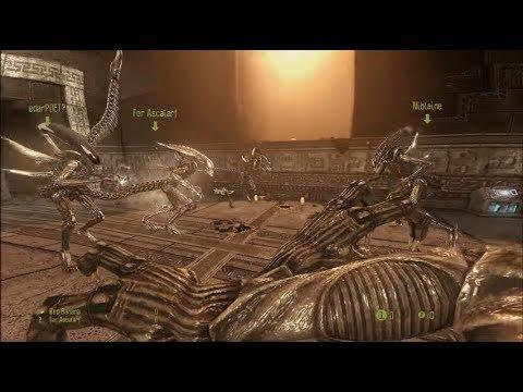 Alien vs Predator 3 with the Asdfs