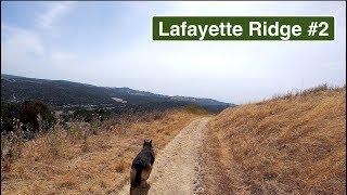 Lafayette Ridge Trail Hiking with German Shepherd Series Part 2 of 4 Hiking with Dog