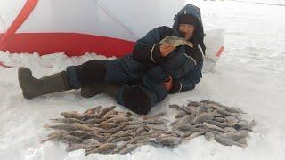 Клёв окуня и карася на озере Тенис Рыбалка озеро Тенис Усть Логатка Омская область 2021
