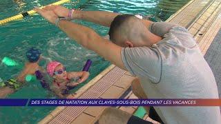 Yvelines | Des stages de natation aux Clayes-sous-bois pendant les vacances