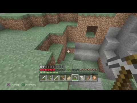Minecraft With project\To cool to be true