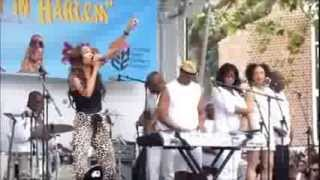 Michelle Williams - If We Had Your Eyes (Live Harlem Fest 2013)