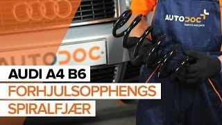 Hvordan bytte forhjulsopphengs spiralfjær på AUDI A4 B6 [BRUKSANVISNING]