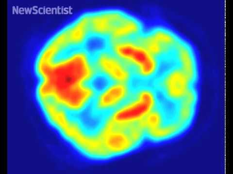 Robo-monkey uses brain power to feed itself