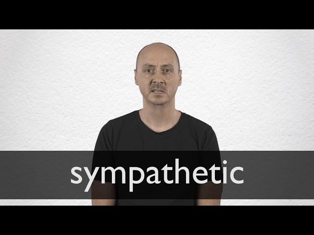define sympathetic character