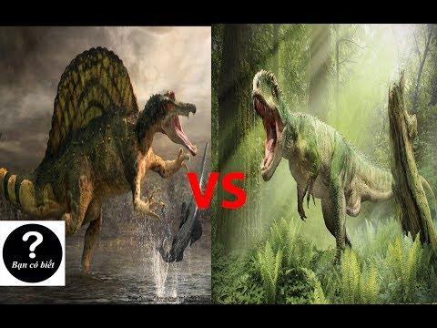 Giganotosaurus vs Spinosaurus, con nào sẽ thắng #8 || Bạn Có Biết?