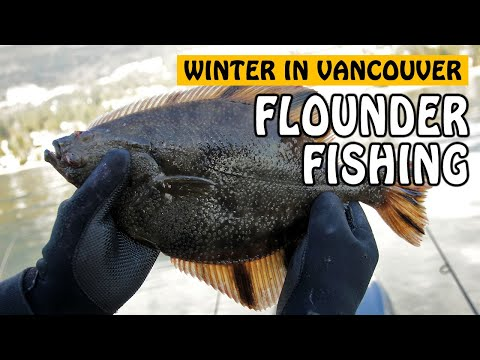 Winter Crabbing and Fishing in Vancouver   Fishing with Rod