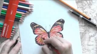 Как рисовать цветными карандашами бабочку(Полная версия урока: http://sovetmasterov.ru/index.php/paintvideo/79 Музыка предоставлена VSP Group в рамках партнерской программы..., 2014-08-31T10:12:37.000Z)