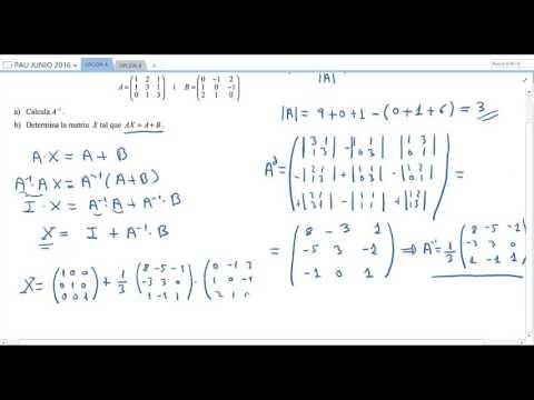 matemáticas-aplicadas-a-las-ciencias-sociales-ii:-junio-2016---opción-a