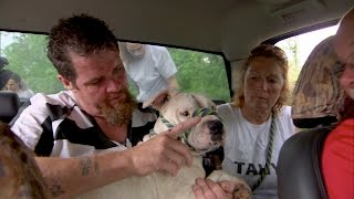 Going Above and Beyond to Rescue a Frightened Dog
