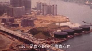 東華三院吳祥川紀念中學 社區生活紀錄 4A 第六組