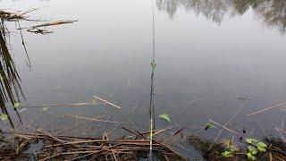 Рыболовные Приключения Рыбалка в Январе Застрял в Лесу