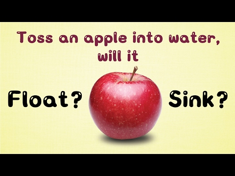 Apple Floats On Water