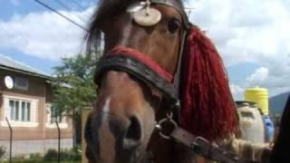 Repeat youtube video Oameni si cai , 2.