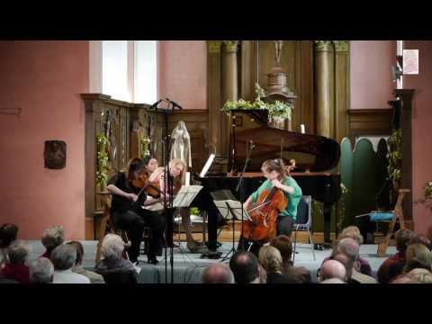 Schubert - Sonatensatz for piano trio D.28 - Margulis, Hallynck, Mikkola