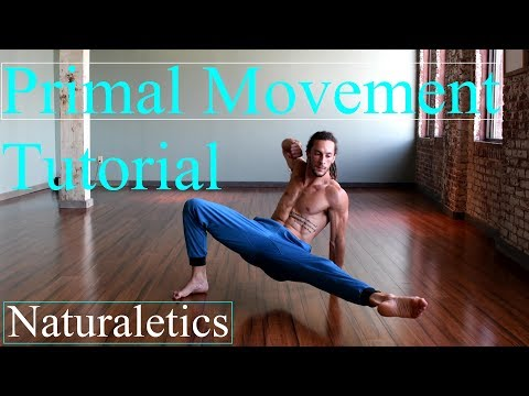 Learn How To Flow: Locomotion, Animal Flow, Primal Movement