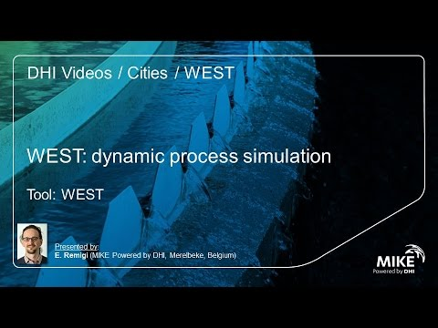 WEST: General introduction to WEST