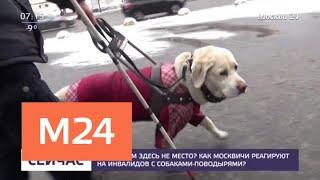 Как москвичи реагируют на инвалидов с собаками-поводырями - Москва 24
