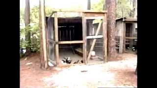Okefonokee Swamp park, Waycross, GA -  8mm Travel Video series