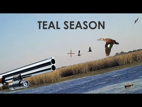 Duck Hunting Teal - 25 Kills - By ShotKam