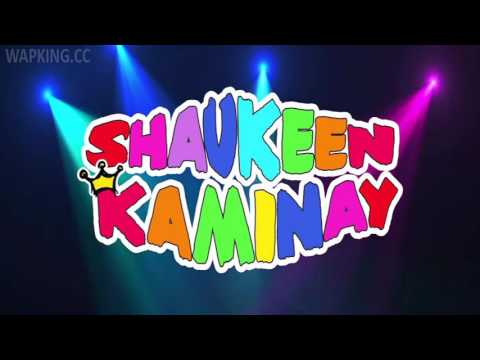 Shaukeen Kaminay full movie free download in hindi in hd