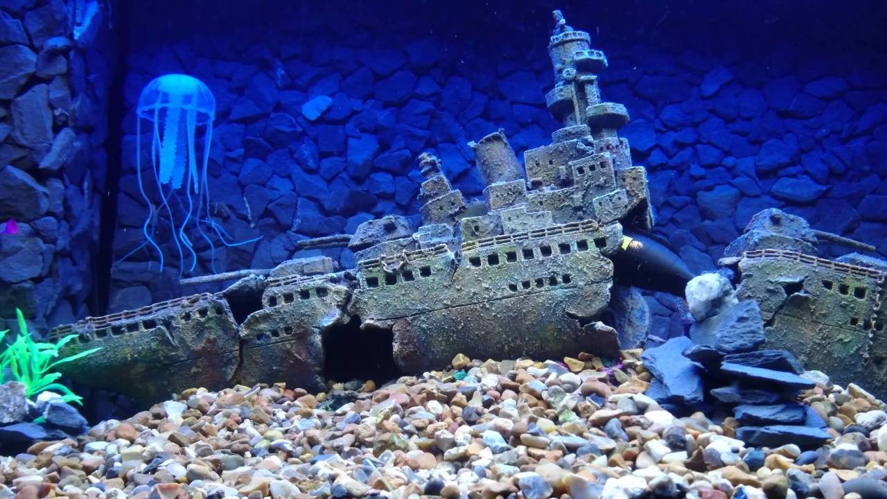 25 Strange Underwater Images Of Sunken Ships | TheTravel |Sunken Ships Underwater