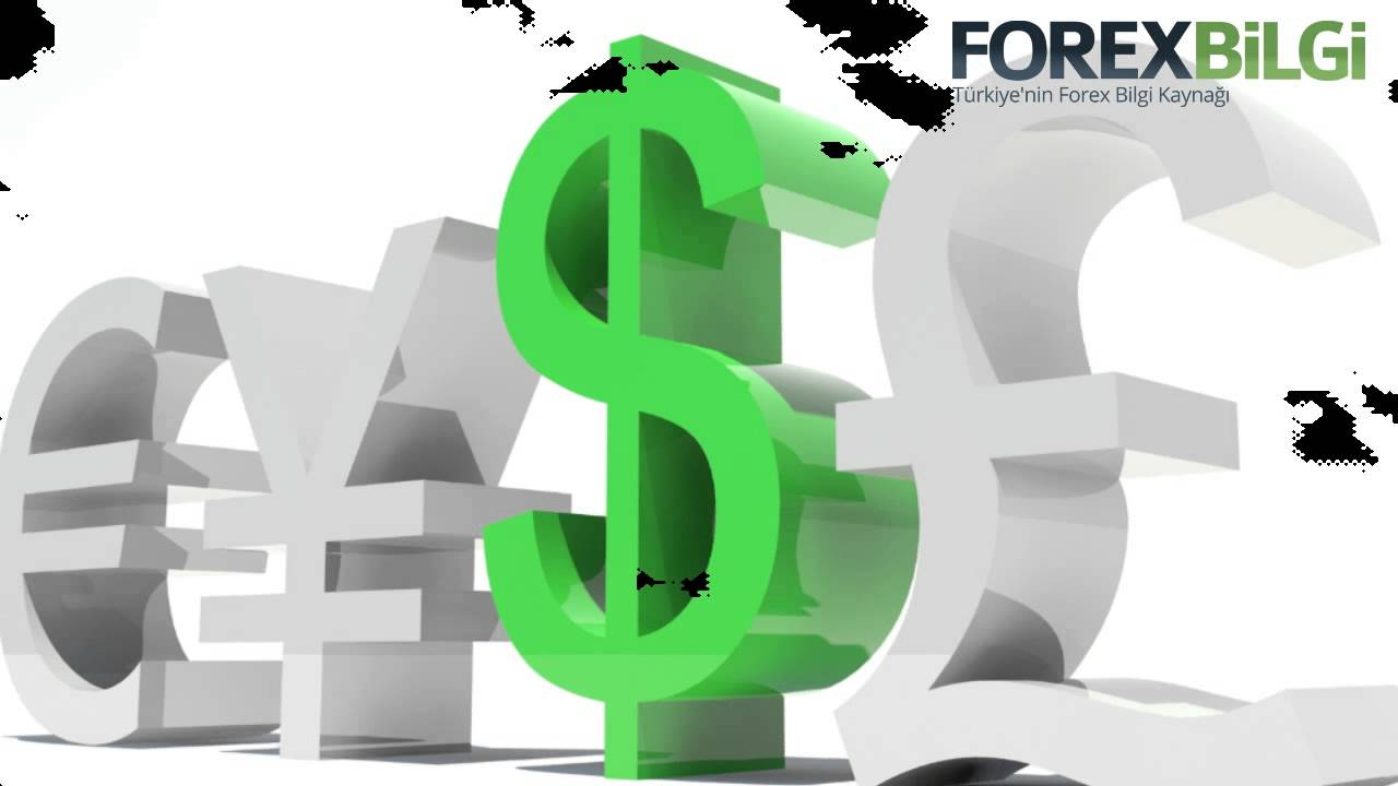 Daily forex tips free