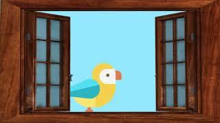 Significado de los pájaros en la casa 🐦 Augurios y presagios de la Naturaleza