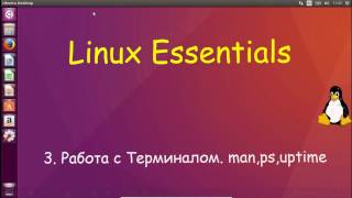 3.Linux для Начинающих - Работа с Терминалом