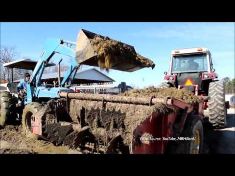 Animal Agriculture in the U.S. - Trends in Production and Manure Management