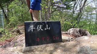 高崎市吉井 新緑の牛伏山ハイキング