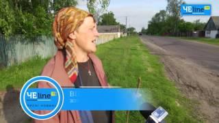Черниговщина: Почему горчит молоко? Дельцы скупают у селян молоко дешевле воды