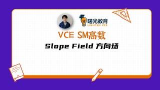 VCE高数SM — Slope Field 方向场