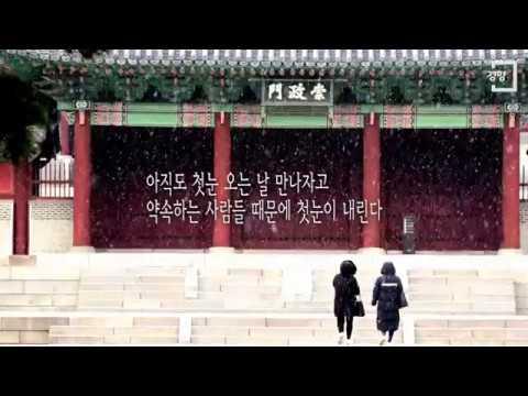 [경향신문] 첫눈 못 보신 분 '눈 내리는 서울'