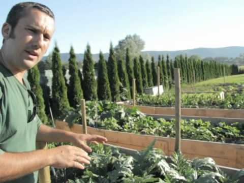 Huertas a la carta dise o de jardines comestibles for Diseno de jardin