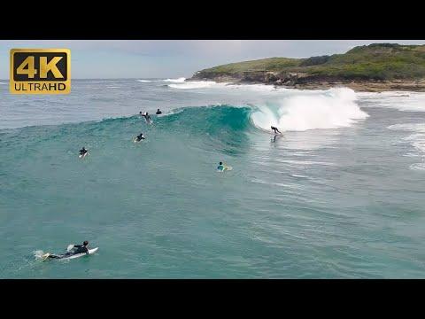 Maroubra Beach Surfing (4K HD)