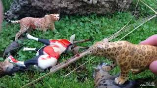 A Big Cat's Clan(S1 EP1)~Toy Feline Series~