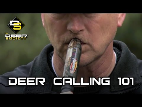 Deer Calling 101 - Fundamentals